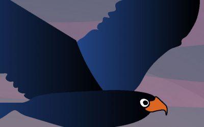 Le club des drôles d'oiseaux